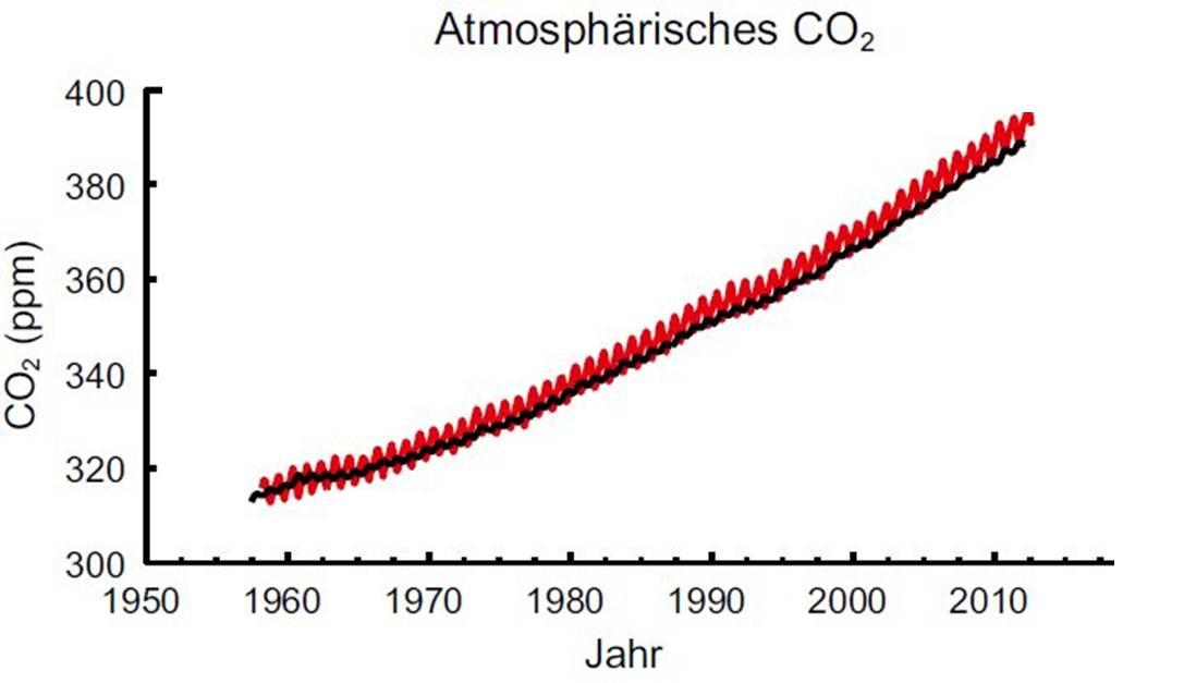 Atmosphärisches Kohlenstoffdioxid steigt an.