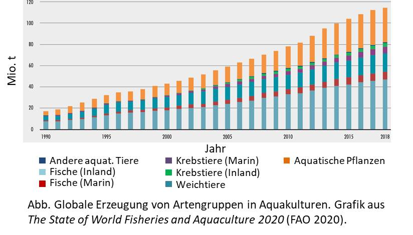 Arten in Aquakultur 2020